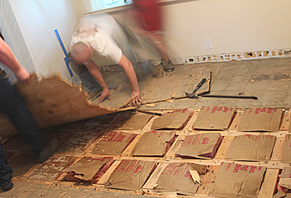 Subfloor Demolition 2