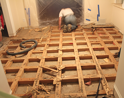 Subfloor Demolition 3
